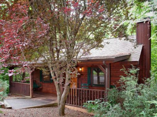 cabin Blog